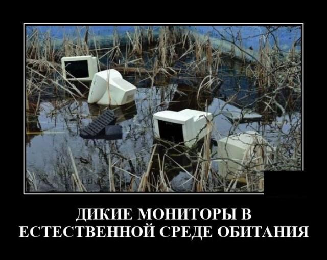 Утренние Демотиваторы (19/04/2021)