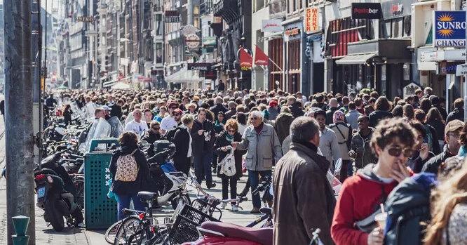 Какую площадь займет человечество, если все люди встанут рядом друг с другом?