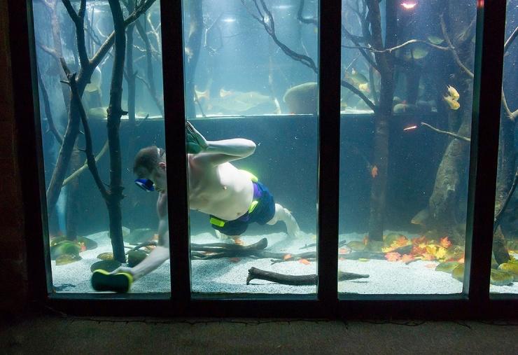 Британец, который ненавидит телевизор, потратил 20 000 фунтов, превратив дом в гигантский аквариум
