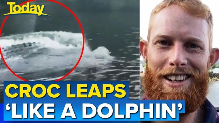 Плывущий по-дельфиньи крокодил попал на видео