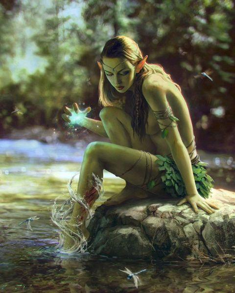«Я хочу больше белок в «Гвинте»: иллюстрации Анны Подедворной