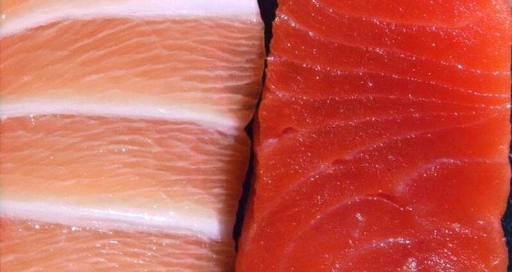 Почему филе рыбы может быть либо красным, либо белым
